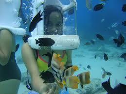Must Visit Under Water Sites 1